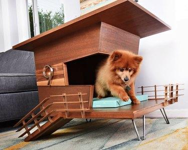 Modern Dog Tower House
