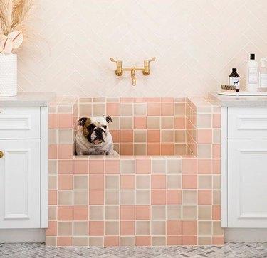 pink tile dog wash