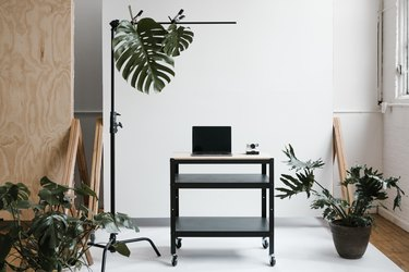 Plants and equipment in the studio.