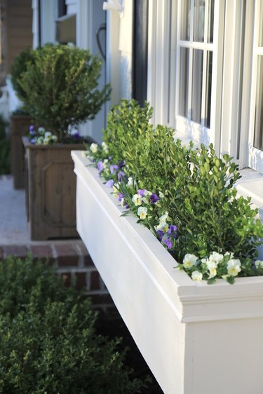 white window flower boxes with small florals