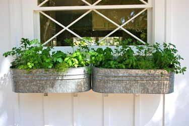 galvanized window flower boxes with herbs