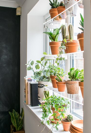 acrylic window plant shelves  with terra cotta plants