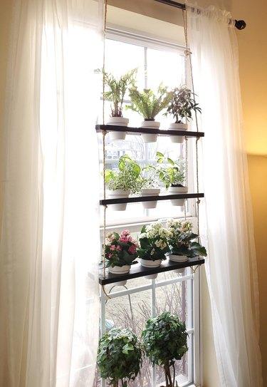 window plant shelf with curtains