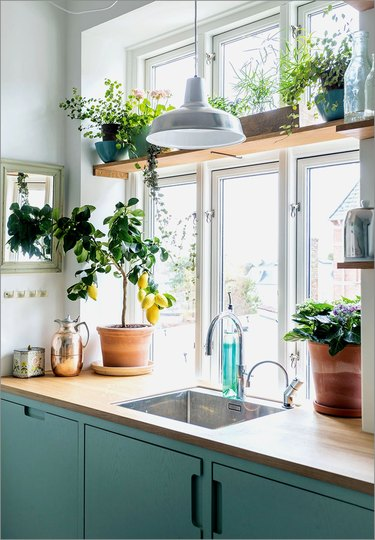 green and white kitchen with wood window plant shelf
