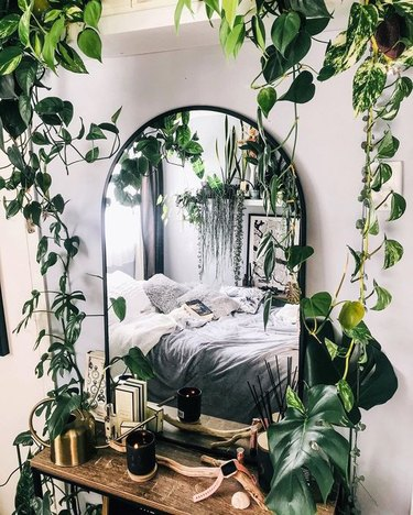 jungle-inspired plant-themed bedroom idea