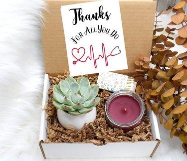 succulent nurse appreciation gift