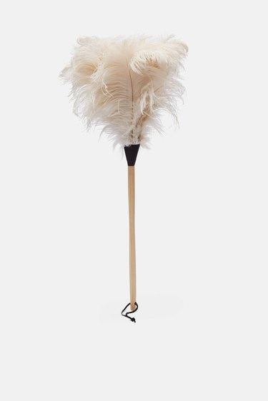 A feather duster