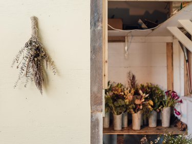 A collection of wild and rustic flowers