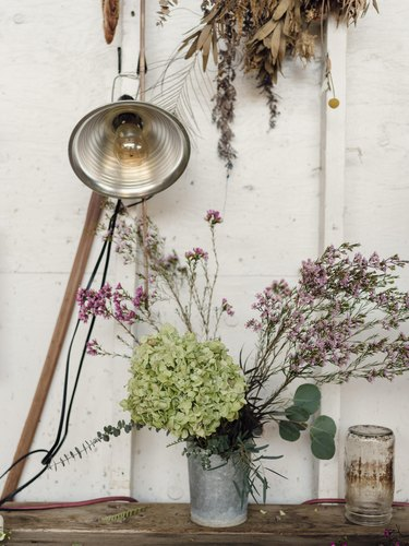 Flowers with a white wall and lamp