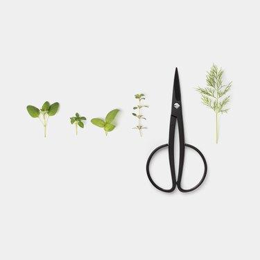 harvester scissors