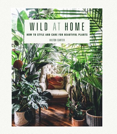 """""""Wild at Home"""" by Hilton Carter book cover"""