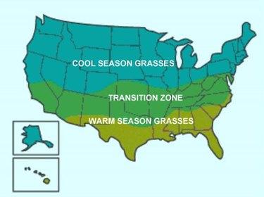 Map of cool-season and warm-season grasses