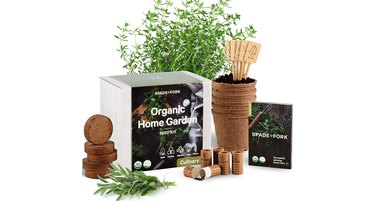 Spade to Fork Indoor Herb Garden Starter