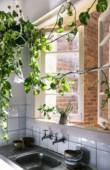 bohemian kitchen sink with macrame plant hanger near open window