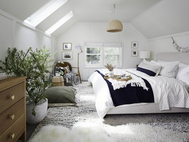 attic skylight designs in bedroom with potted indoor plant and basket pendant light
