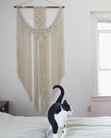 cat on bed with macrame hanging in the background