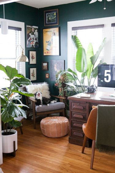 forest green paint in office