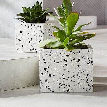 two terrazzo planters