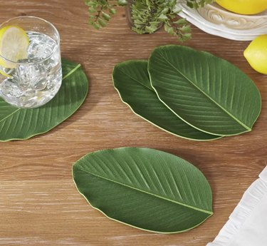 oalm frond coasters