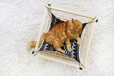 Reversible Cat Hammock