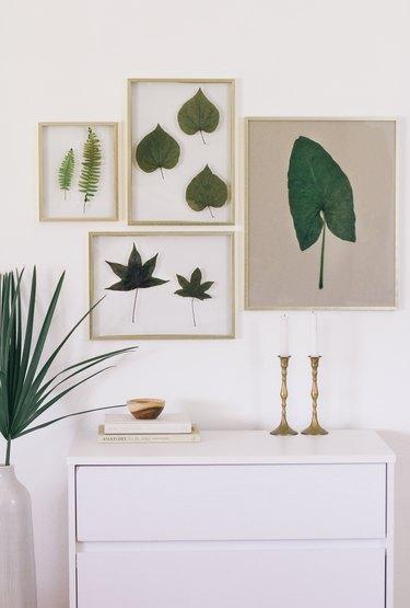 Preserved leaf art