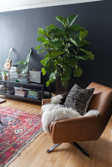 bohemian living room with black walls