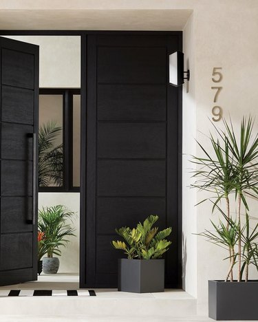 black exterior door idea with white exterior and potted plants