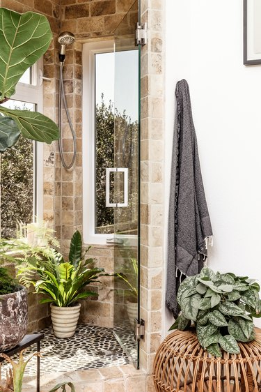 Plants in the shower