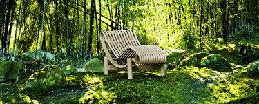 chair outside near trees