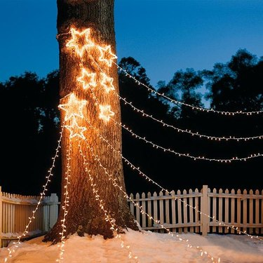exterior Christmas decorations with White strung lights with white star lights on tree trunk.