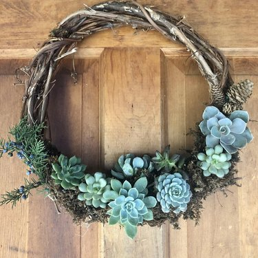 Christmas Door Decorations with Succulent wreath with pinecones.
