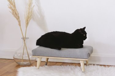 DIY modern minimal cat bed