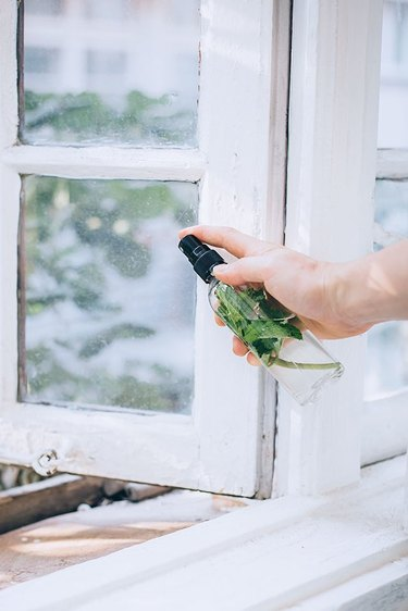 Homemade spray to keep bugs out of the kitchen