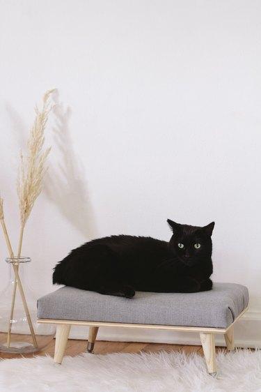 DIY minimal Scandinavian cat daybed