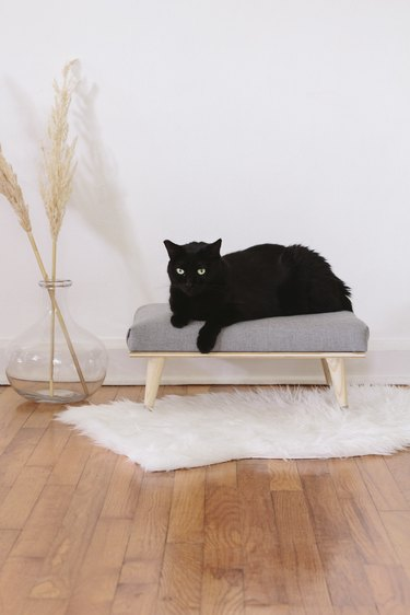 DIY chic stylish cat bed