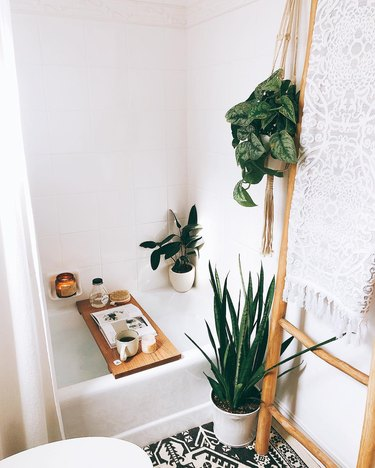 Bathroom with potted plants near bathtub and towels hanging on ladder