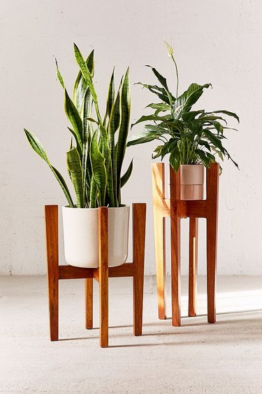 Two wooden mid-century plant stands in different sizes with white cylinder planters