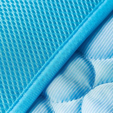 close-up of a blue pet cooling mat