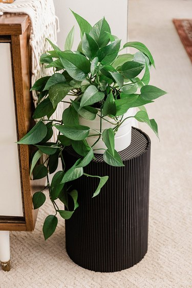 Try styling this contemporary plant stand on its own or alongside a cluster of other planters.