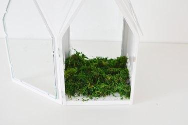 DIY Christmas Terrarium