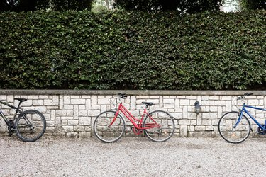 Privacy hedges on top of a brick half wall; three bicycles lean against the wall