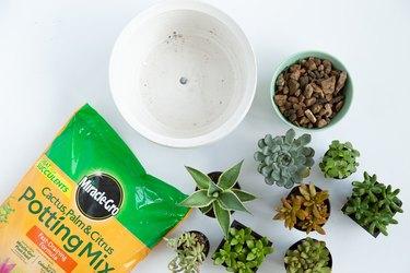 Supplies for a Succulent Shallow Bowl Planter
