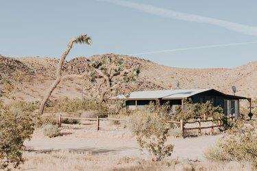 Joshua Tree cabin in desert