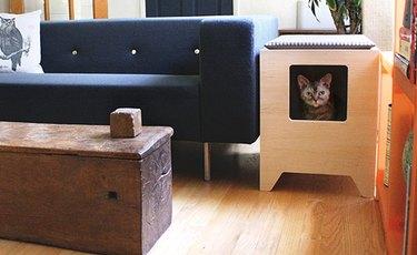 litter box solution