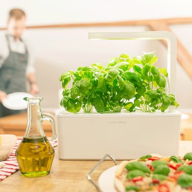The 9 Top-Rated At-Home Herb Gardens and Growers You Can Get on Amazon