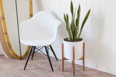 Midcentury-style plant stand using dowels