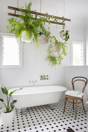 Scandinavian bathroom with clawfoot bathtub and hanging plants