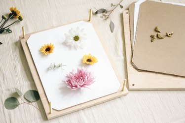 Various flowers placed on top of white paper inside the flower press
