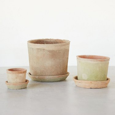 three clay planters with saucers