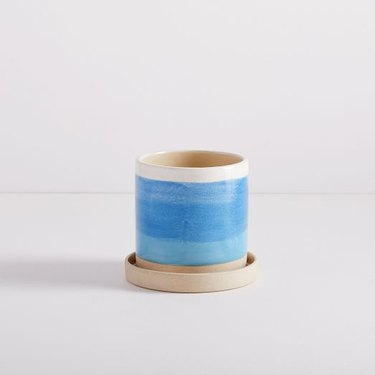 blue planter with saucer